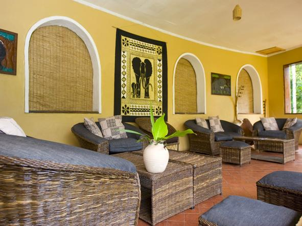 Primate Lodge - Lounge